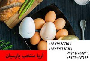 چگونه تولید تخم در گله ی طیور را به حداکثر برسانیم09121986651