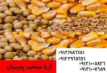 قیمت کنسانتره 2/5 درصد A - تغذیه شترمرغ09121986651