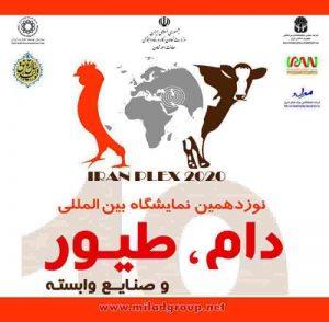 برگزاری نوزدهمین نمایشگاه بین المللی دام، طیور و صنایع وابسته تهران 1399 از شنبه 5 مهرماه تا سه شنبه 8 مهرماه محل دائمی نمایشگاه های بین المللی تهران