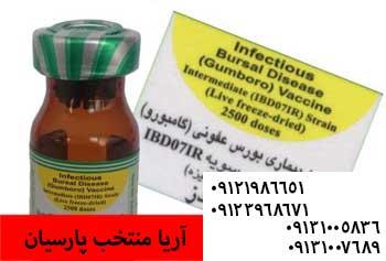 زمان مناسب و نحوه استفاده از واکسن گامبورو